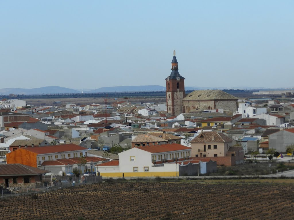 Ciudad Real  66055510