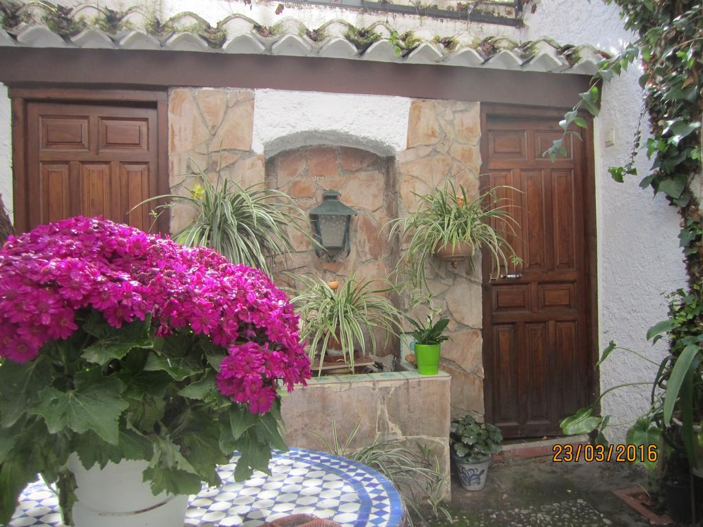 Granada 66349610
