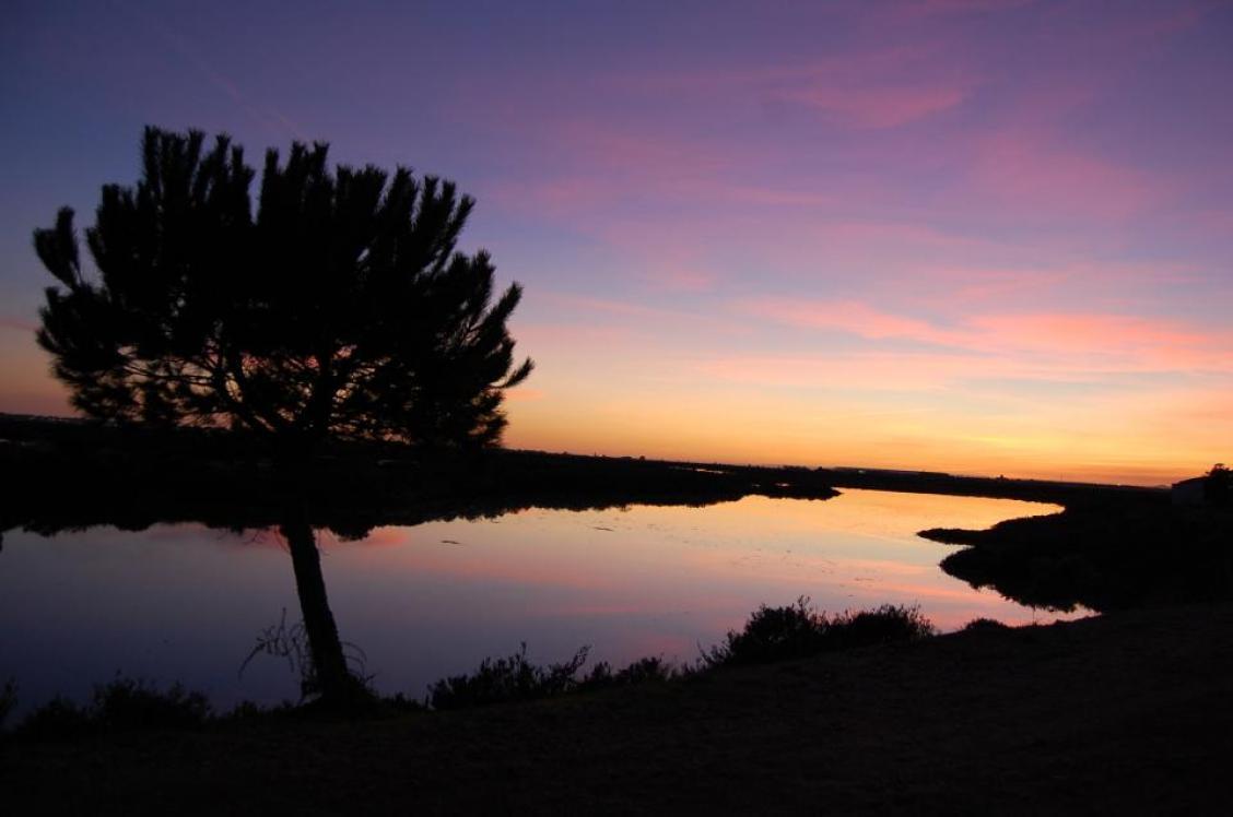 Huelva  - Página 2 Atarde10