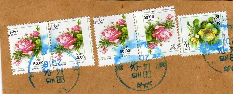 belles roses et autres Img00511