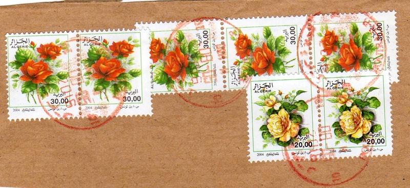 belles roses et autres Img01010