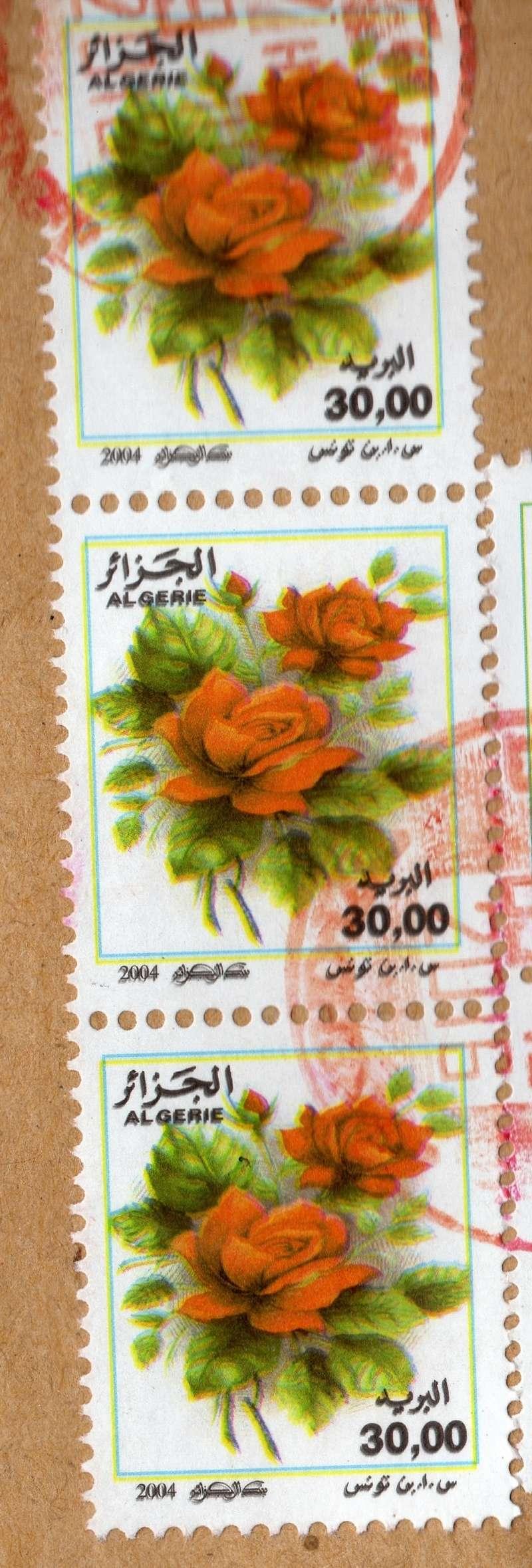 belles roses et autres Img01510