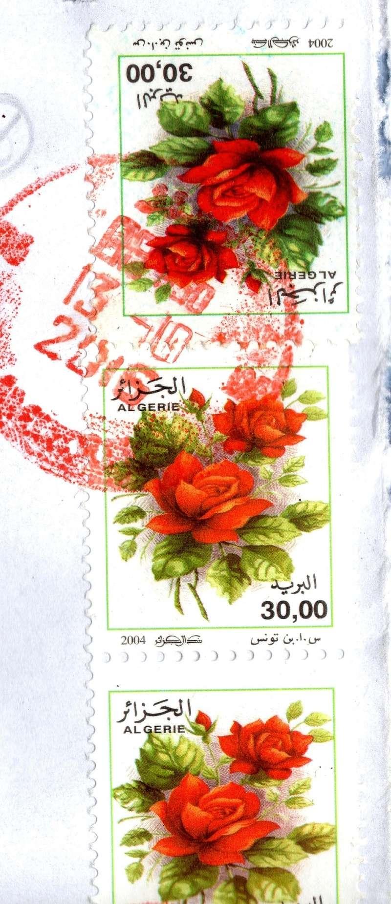 belles roses et autres Img01610