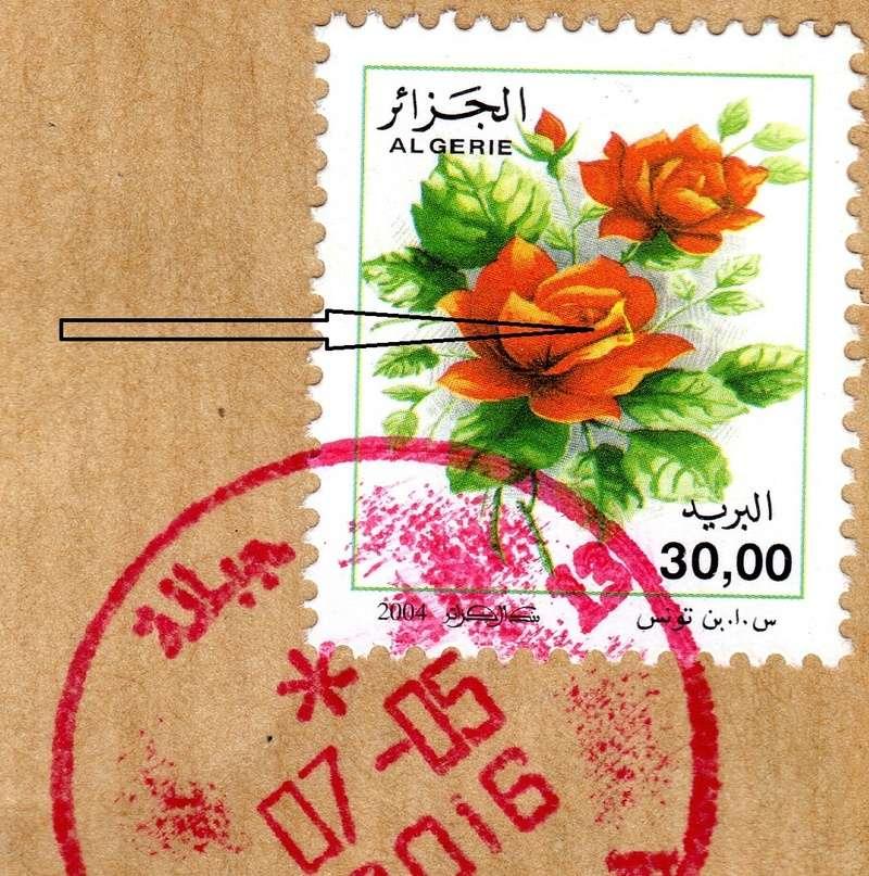 belles roses et autres Img01810