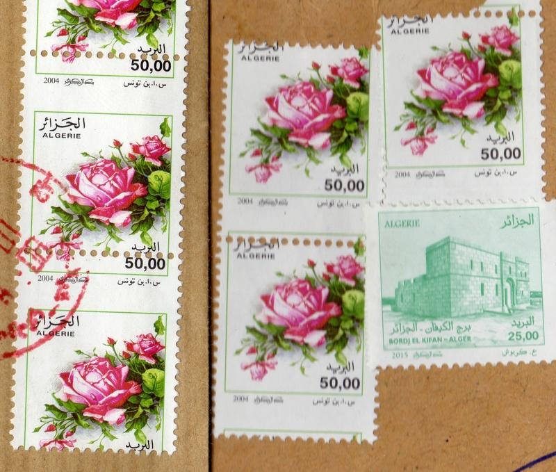 belles roses et autres Img19810
