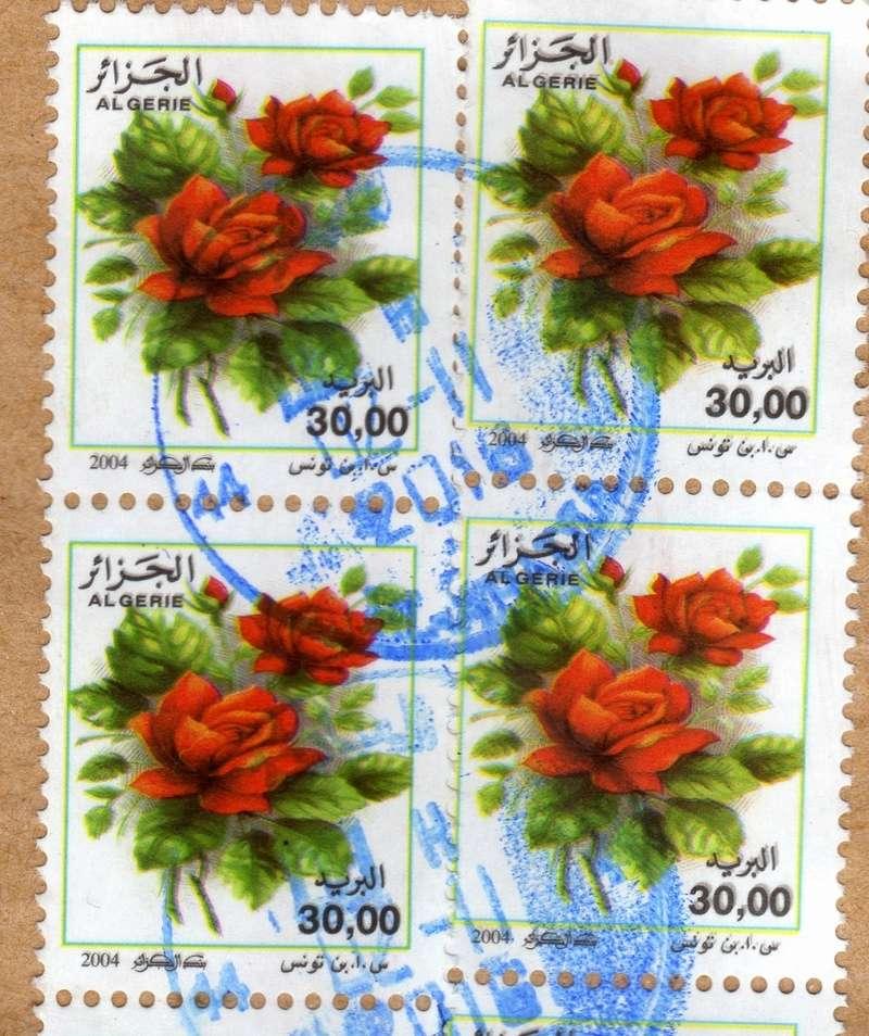 belles roses et autres Img20110