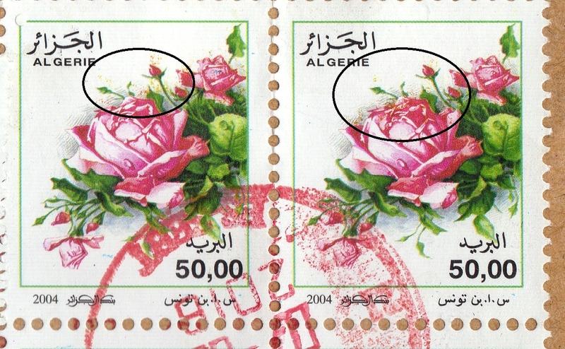 belles roses et autres Img20810