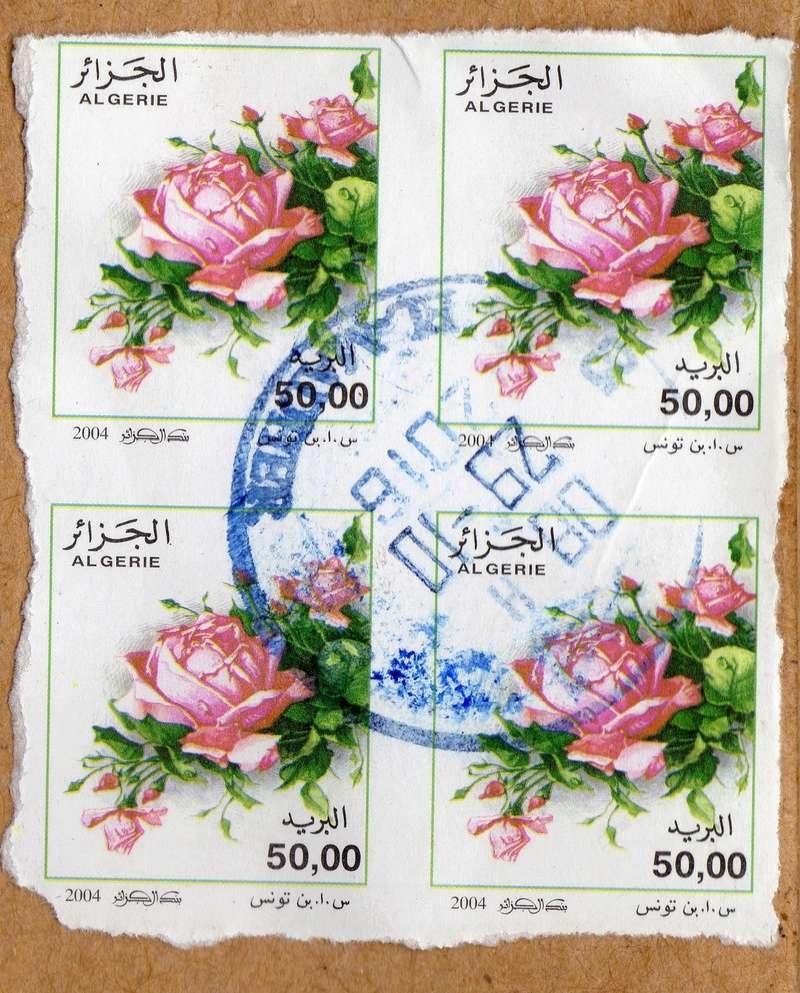 belles roses et autres Img28210