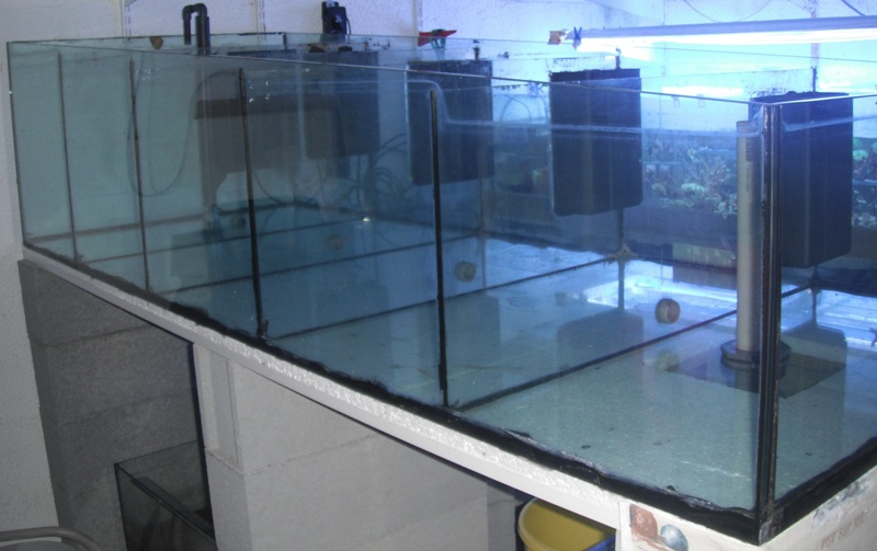 vends aquarium 600 litres à 5 compartiments Dscf5411