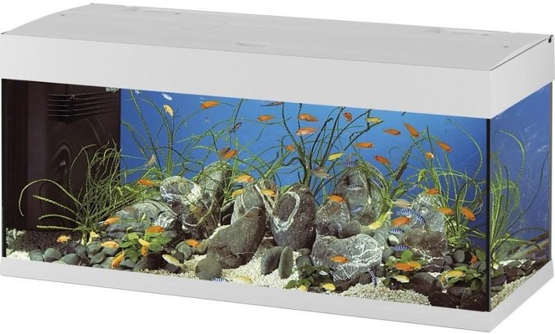 vends aquarium Dubaï 120 blanc [vendu) Dubai_10