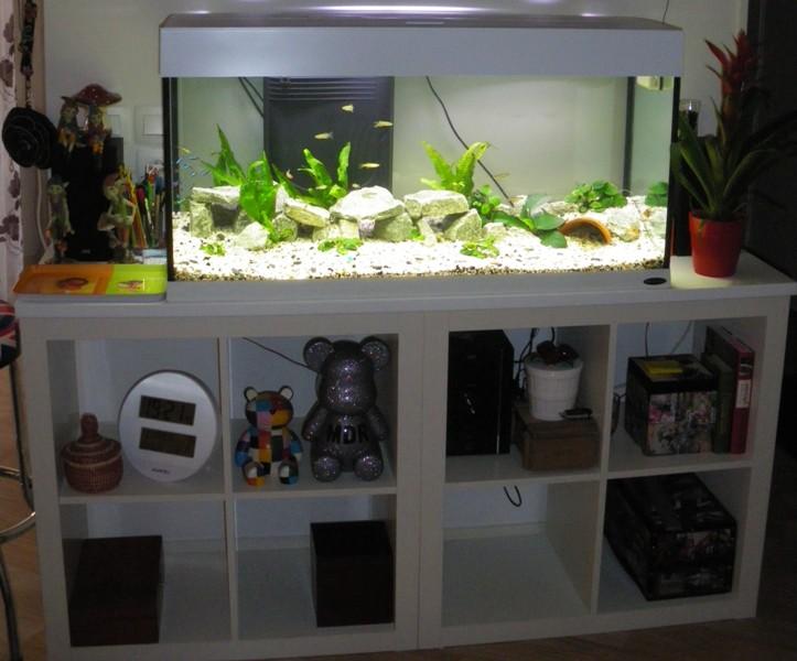 vends aquarium Dubaï 120 blanc [vendu) Imgp1710