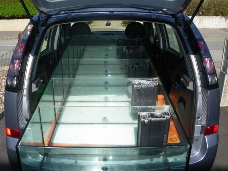 vends aquarium 600 litres à 5 compartiments Imgp8510