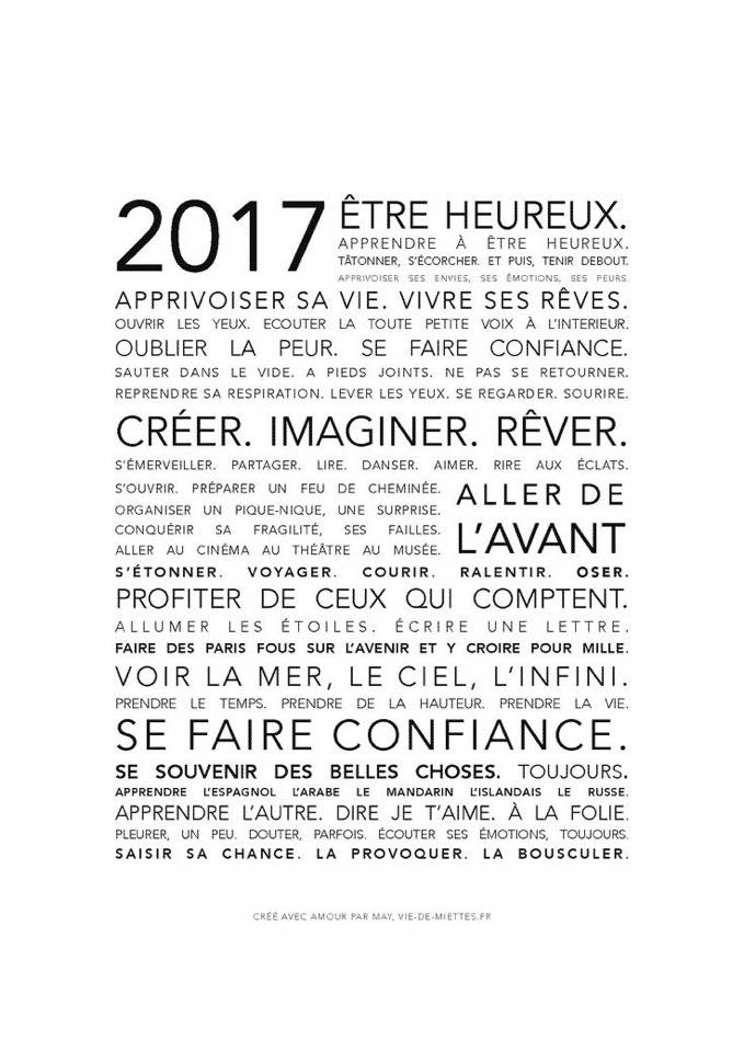 Bonne année 2017 ! Img_4510