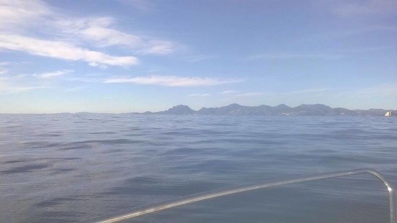 sortie bateau de ce matin 15996211