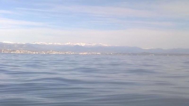 sortie bateau de ce matin 16111411