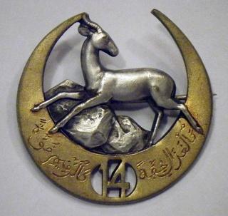 Les insignes d'Infanterie d'Afrique 1939-1940 Dscf0511