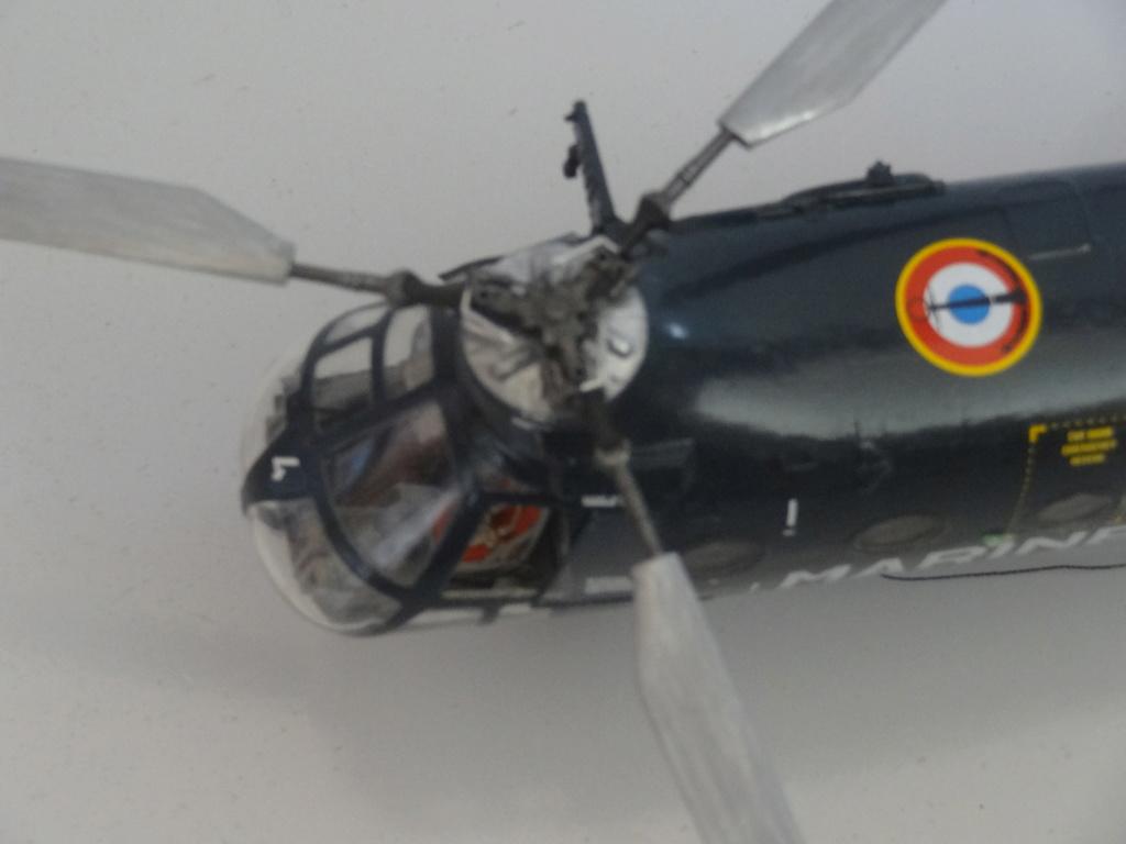"H-21 C ""Banane volante"" Dsc07317"