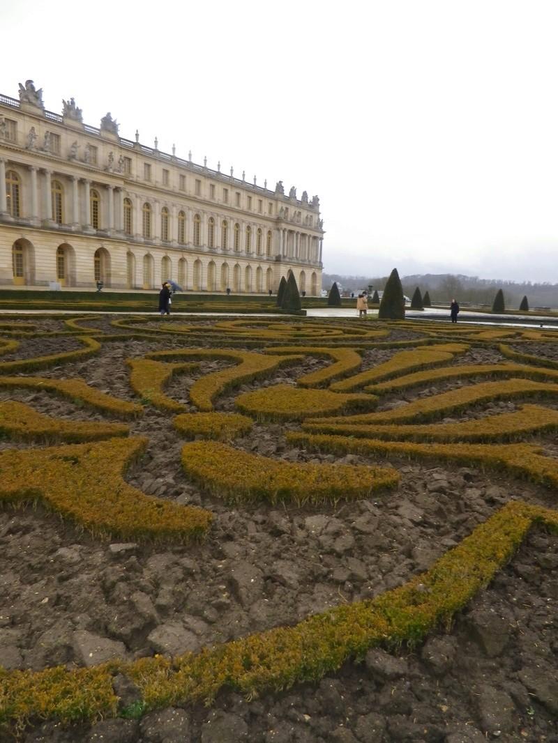 Les Buis des jardins du château de Versailles Imgp5712