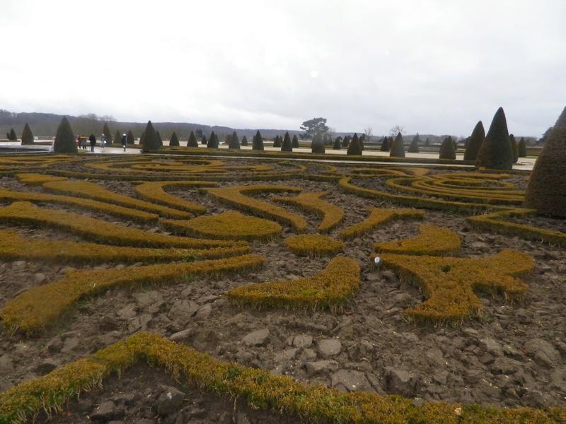 Les Buis des jardins du château de Versailles Imgp5713