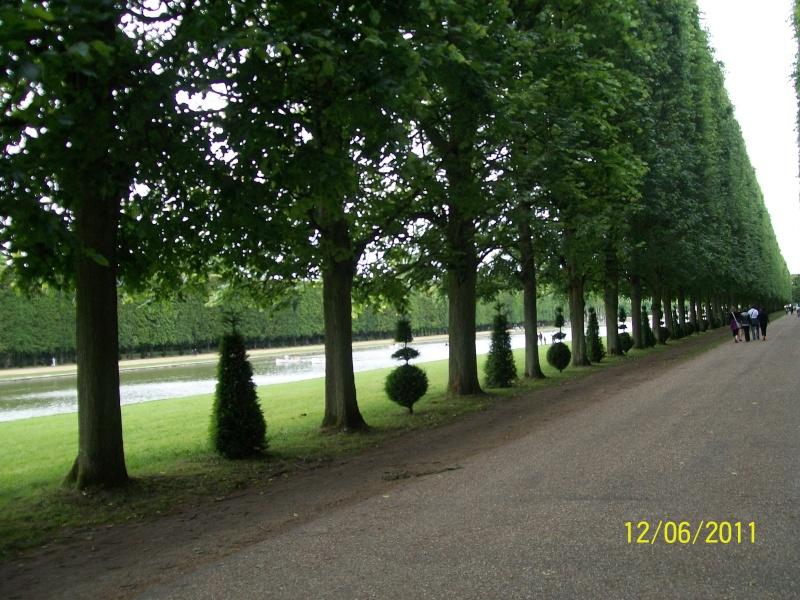 Versailles, le Grand Canal Photo310