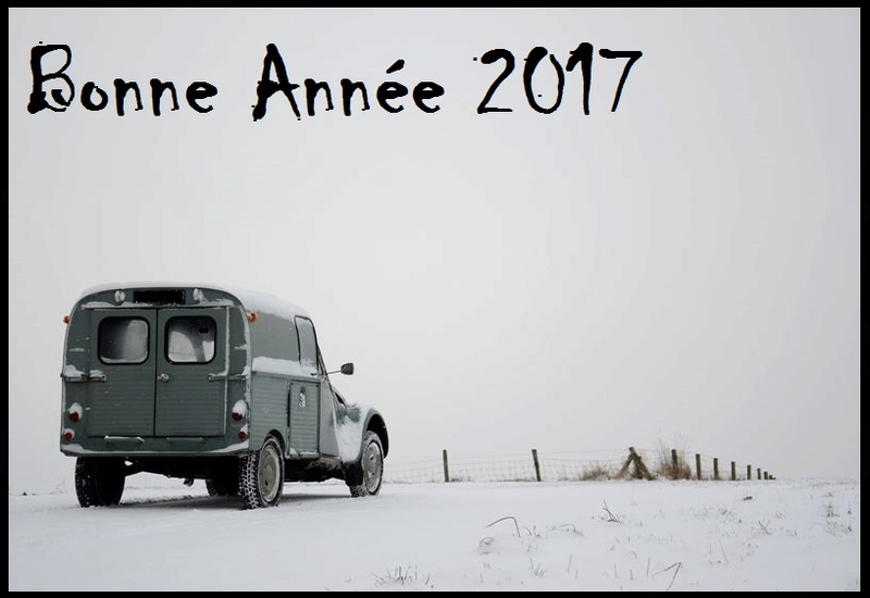 Bonne Année 2017 Bonne_10