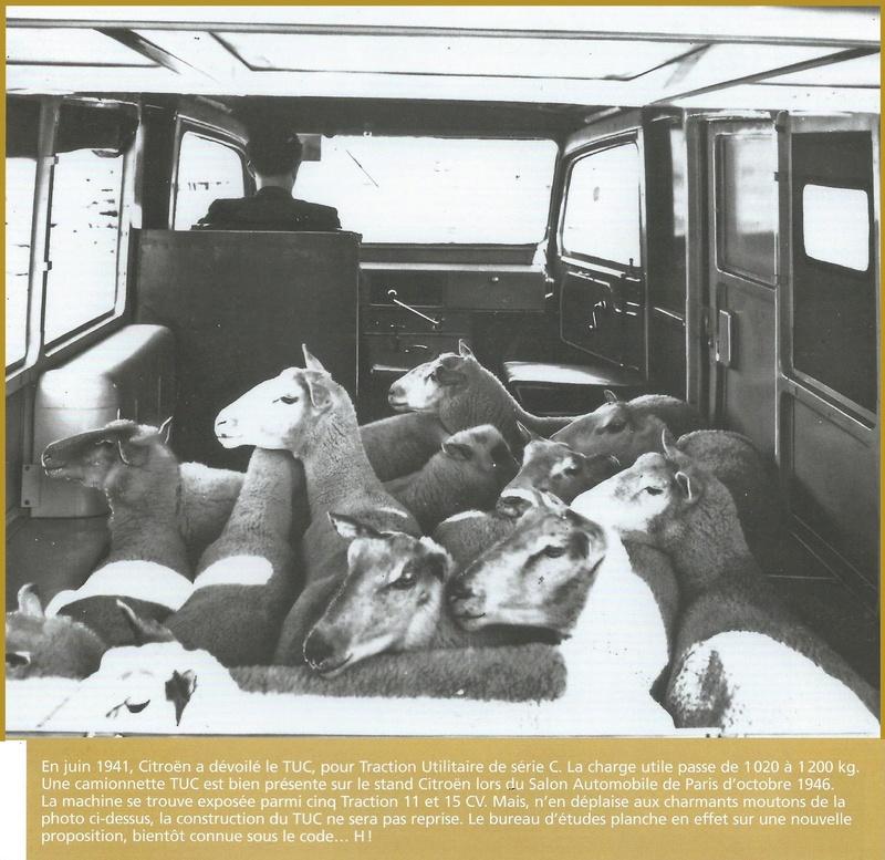 le TUB,TUC et TAMH - Page 3 Citroe11