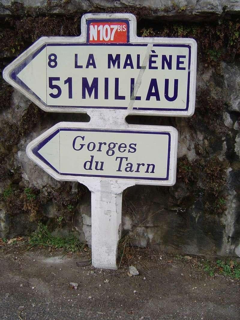 Les Cevennes autour du Mt Aigoual Lozere10