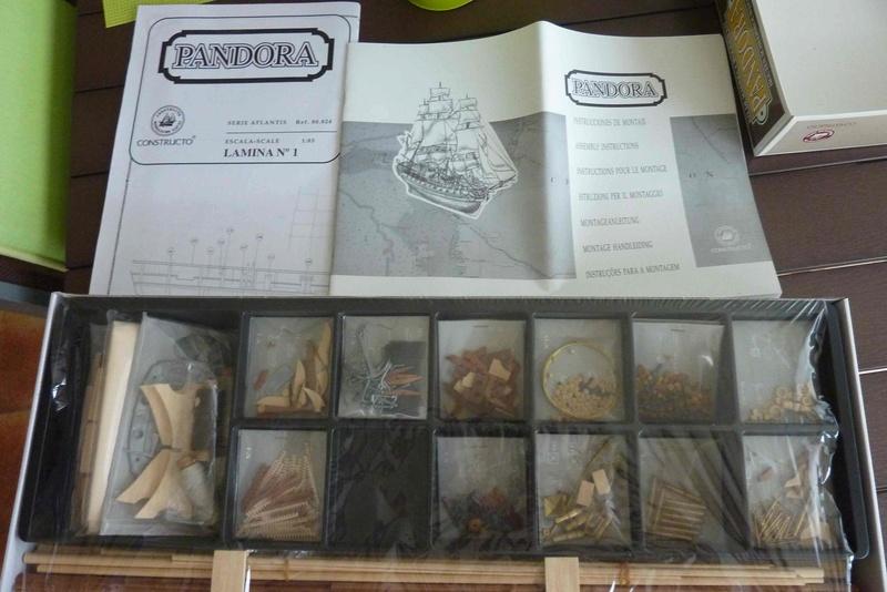 Kit bois PANDORA de chez CONSTRUCTO 310