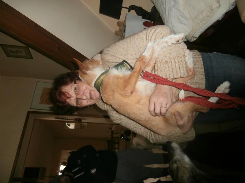 MELOSA petite podenca barbuda,un vrai bonheur ! Scooby France Adoptée   - Page 2 P3280011