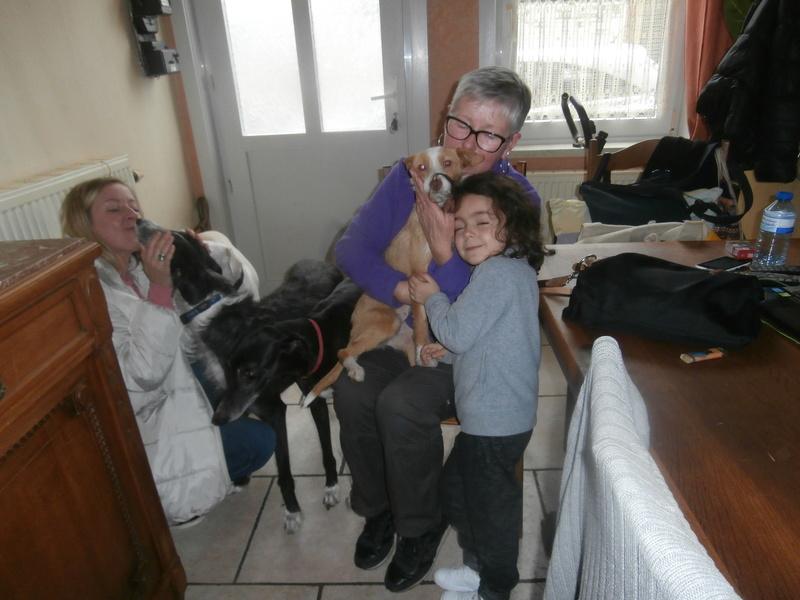 MELOSA petite podenca barbuda,un vrai bonheur ! Scooby France Adoptée   - Page 2 P4010011