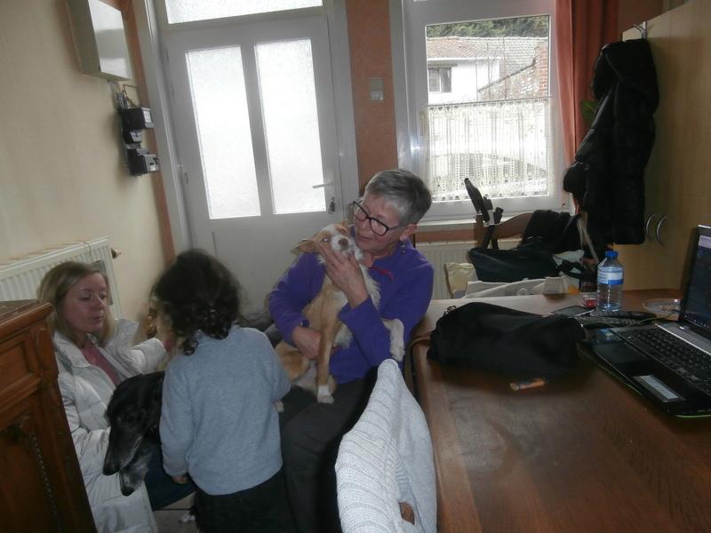MELOSA petite podenca barbuda,un vrai bonheur ! Scooby France Adoptée   - Page 2 P4010013
