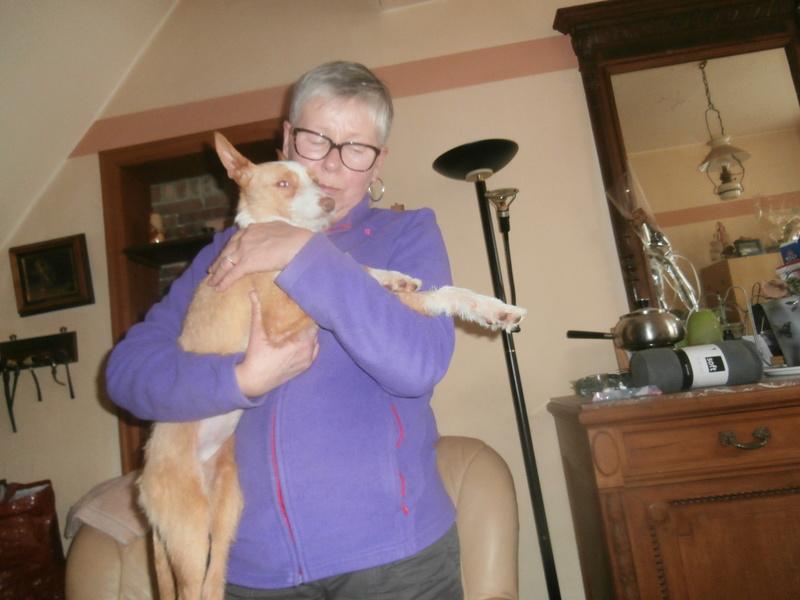 MELOSA petite podenca barbuda,un vrai bonheur ! Scooby France Adoptée   - Page 2 P4010015