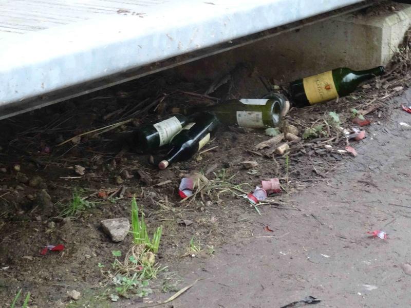 Encombrants, poubelles et caddies - Page 2 Dsc07049