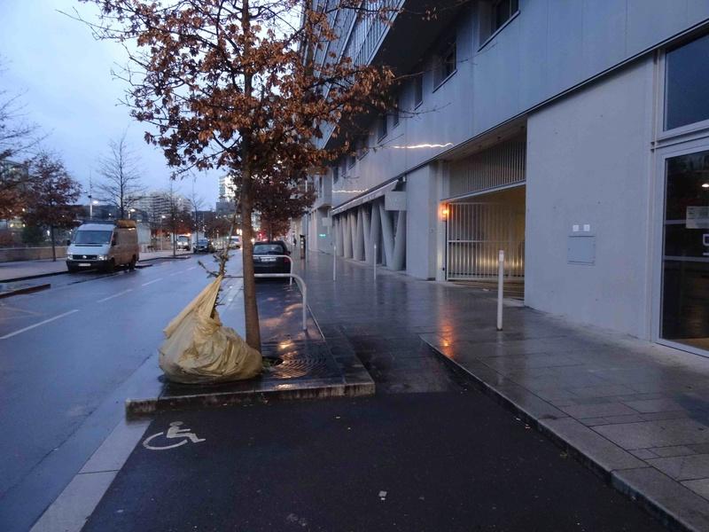 Collecte de sapins par Grand Paris Seine Ouest (GPSO) Dsc07218