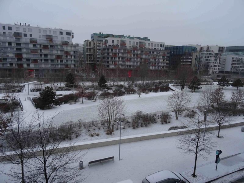 Le quartier sous la neige Dsc07221