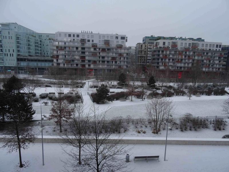 Le quartier sous la neige Dsc07223