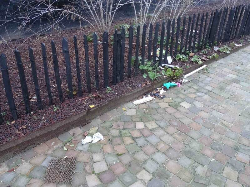 Encombrants, poubelles et caddies Dsc07920