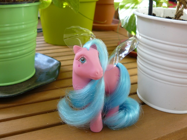 [PHOTOS] Idées d'ailes pour les Flutter Ponies : mes essais ! P1110854