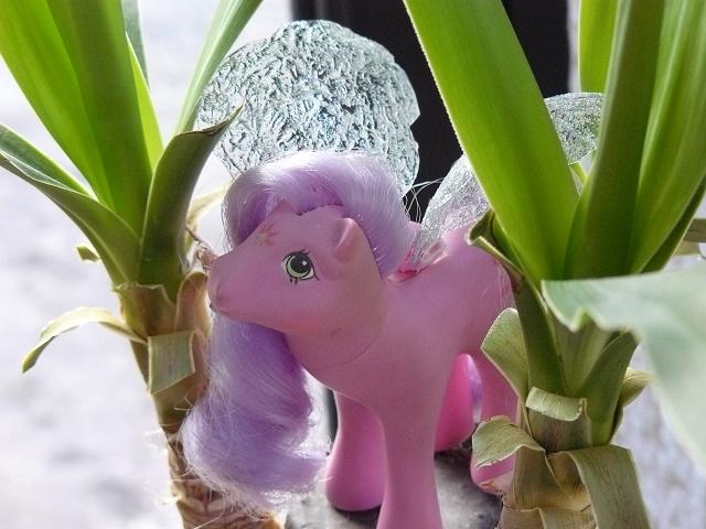 [PHOTOS] Idées d'ailes pour les Flutter Ponies : mes essais ! P1120057