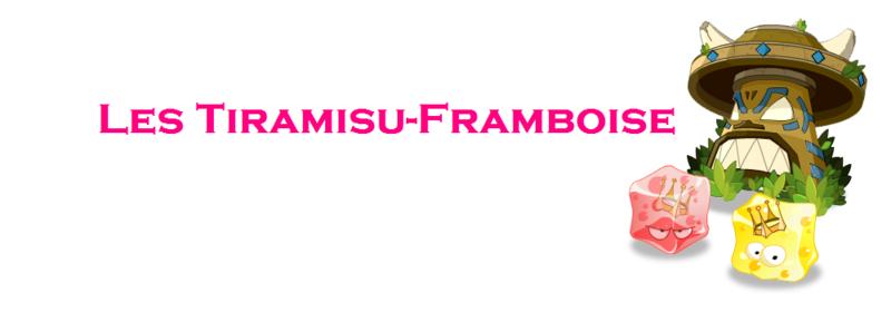 Les Tiramisu-Framboise