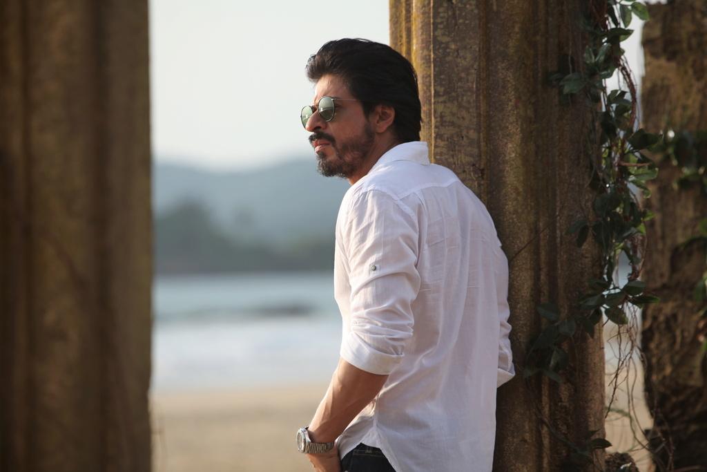 Шах Рукх Кхан 2016 - Страница 2 Dilwal10