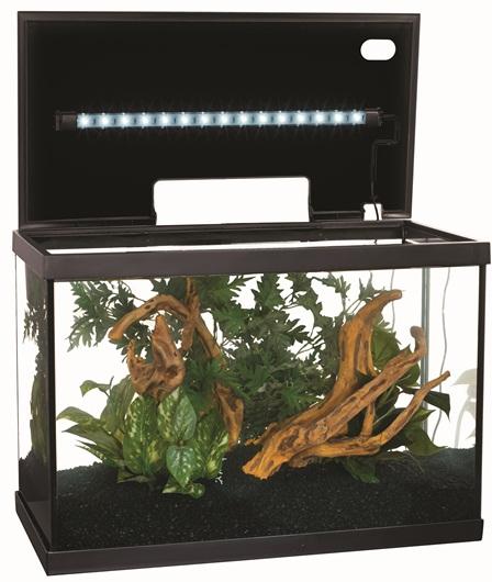 Projet pour un aquarium de crevettes Caridina Cardinale Aquari10