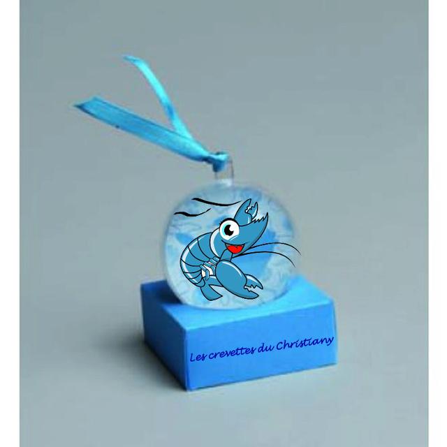 Le Christiany, l'aquarium pour les Guppys Dragee10