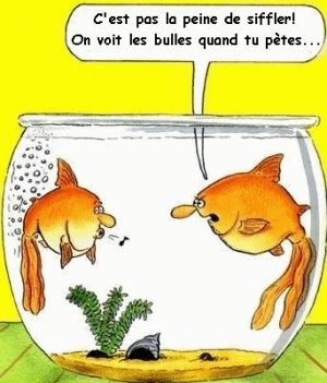 Le coin Humour  - Page 2 Humour10
