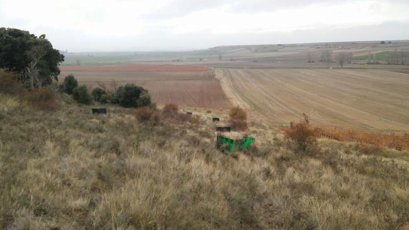 Fotos del campo  Img-2010
