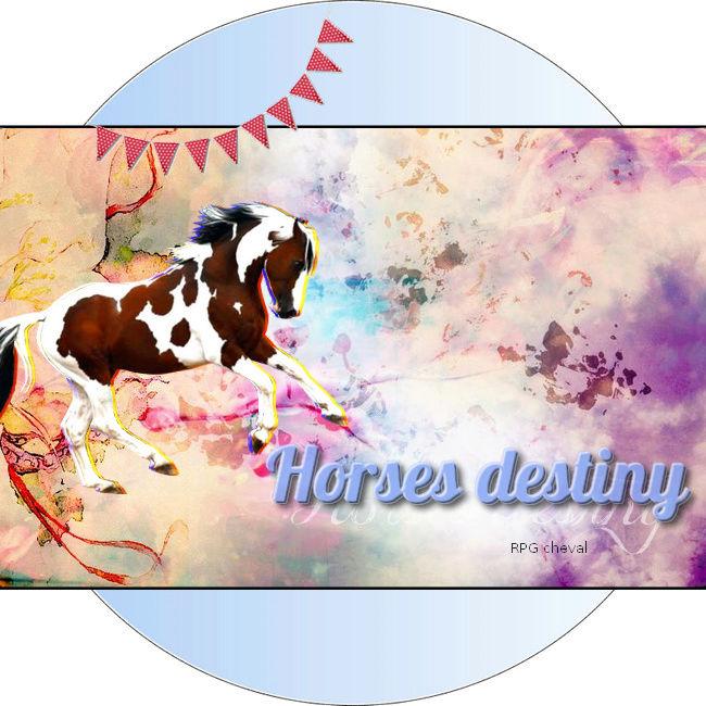 Horses Destiny