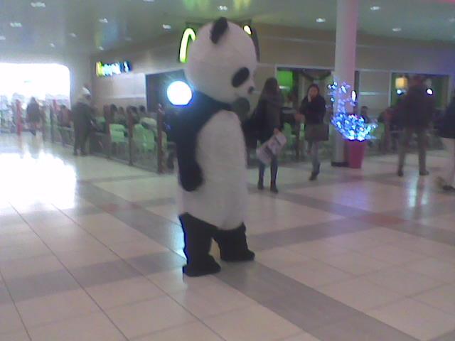 Bonjour de la part de Panda31 - Page 3 Photo039