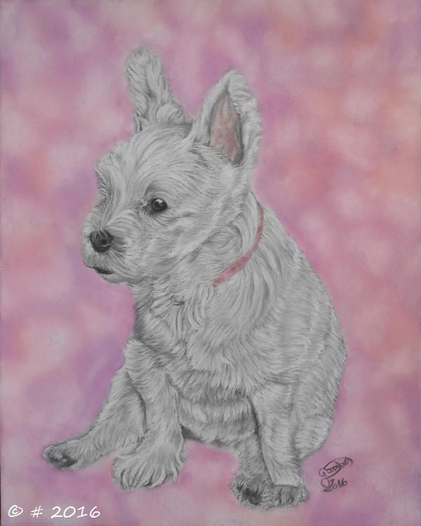 Portraits animalier et quelques dessins personnels 5-17110