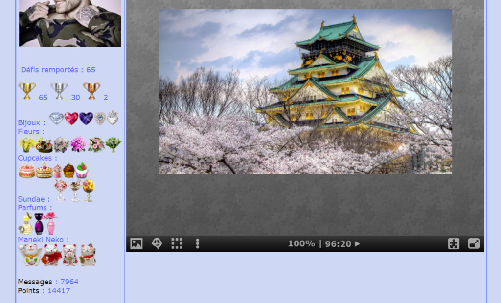 Puzzle #0507 / Ozaka Castle Mon_am38