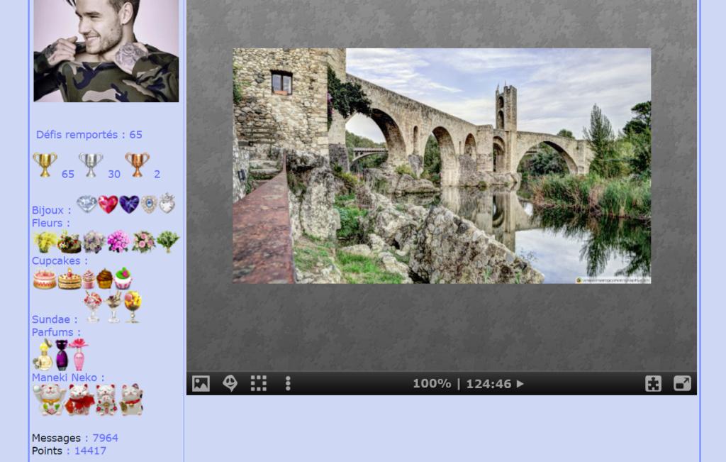 Puzzle #0510 / Besalus Romanesque Bridge Catalonia  Mon_am39